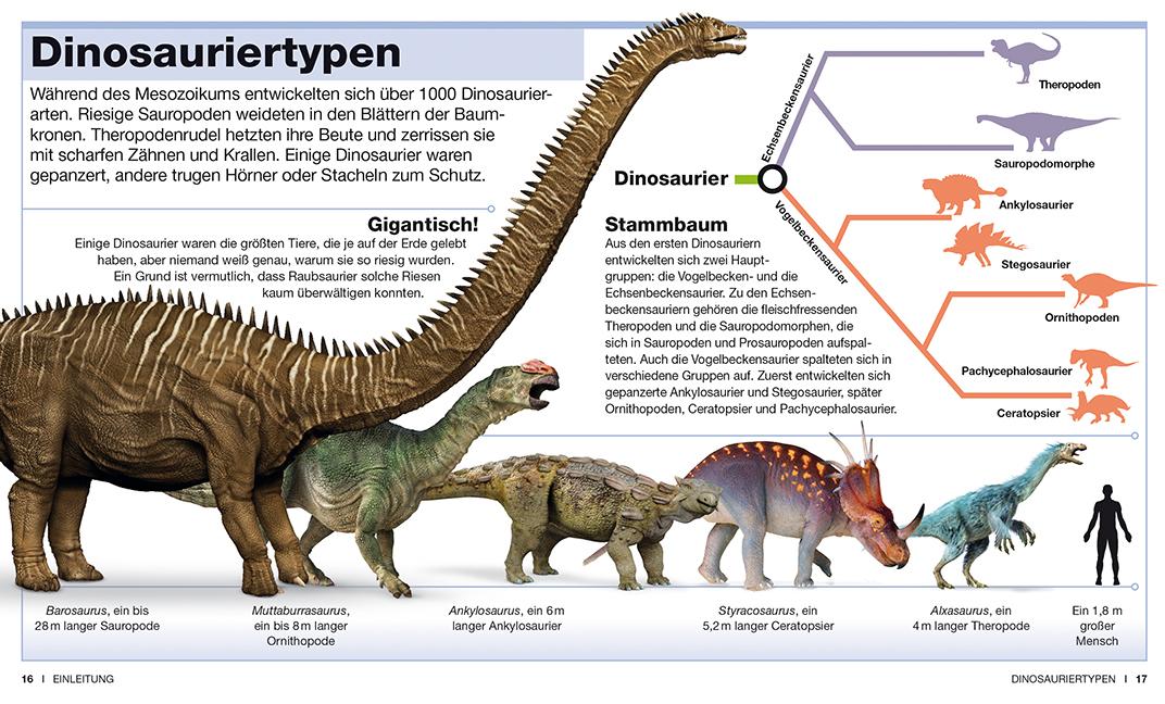 Clever Dinosaurier - Das schlaue Taschenlexikon. Leseprobe